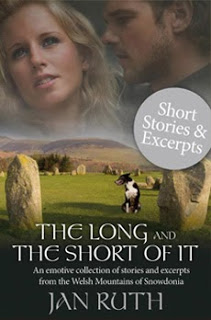 The Long and The Short of It Book Cover